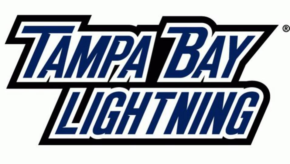 bay area manufacturers association bama night out with the lightning